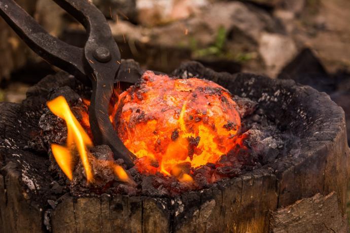 Detail hutné houby 1